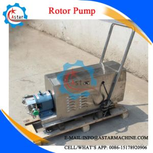 Best Selling Mobile Type Stainless Steel Rotor Pump pictures & photos