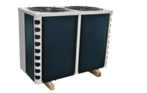 Swimming Pool Heat Pump with World Famous Compressor pictures & photos