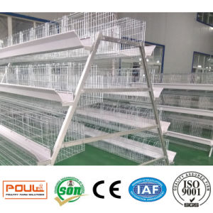 Hot Galvanized Poultry Equipment Chicken Layer Cage pictures & photos