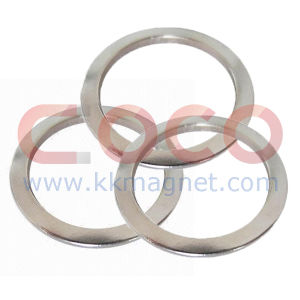 Ring NdFeB Magnet for Loudspeaker pictures & photos