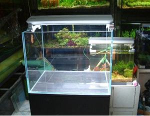 Overflow Low-Iron Ultra Clear Glass Aquariums pictures & photos