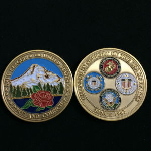 Custom Double Sides 3D Military Challenge Coins for Awards pictures & photos