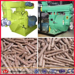 Professional Manufacture Ring Die Wood Pellet Mill