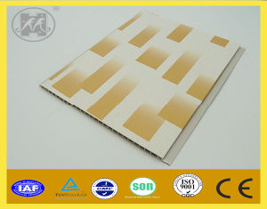 New Panel for Ceiling and Wall Decoration PVC pictures & photos