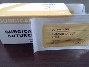 Plain Catgut Surgical Suture Material (Non- sterile) pictures & photos