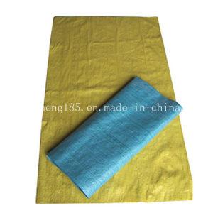 PP Woven Plastic Bag Fk-350 pictures & photos