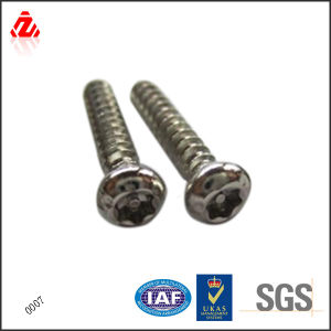 Custom Stainless Steel Anti-Theft Screw pictures & photos