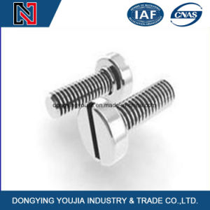 in Stock Cks Cross Recessed Cheese Machine Screws M2/M3/M4/M5/M6 pictures & photos