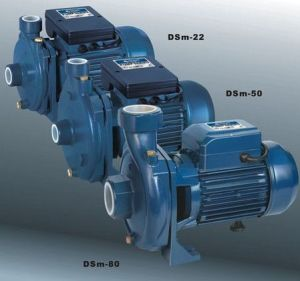 Micro Centrifugal Pump (DSm-80) pictures & photos
