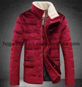 Fashion Outdoor Garments, Ski Down Fleece Winter Jacket for Man pictures & photos