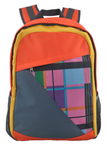 School Backpack with Swiss Quality and Good Price pictures & photos