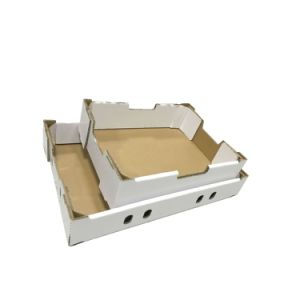 Hot Sale Blank No Printing Corrugated Box for Fruits pictures & photos
