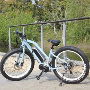 26′′ 4.0 Bafun MID Drive Fat Tire Mountain Ebike pictures & photos