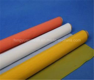 Polyester / Nylon Silk Printing Screen Mesh/Belt/ Cloth pictures & photos