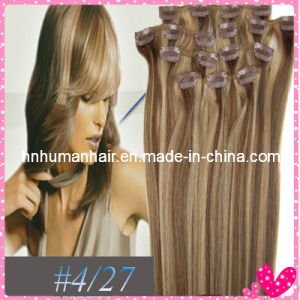 Fashion Hair (HN-C-066)