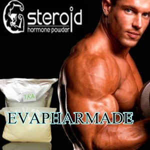 purity solutions steroids