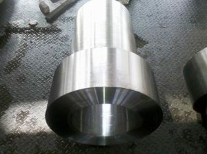 Cylinder Forgings pictures & photos