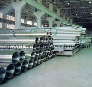 Pipe (ASTM A312 TP316L)