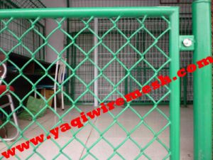Summer New Arrival! Factory Supply PVC Green Hook Flower Net pictures & photos