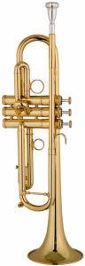 Trumpet (EVA-582)