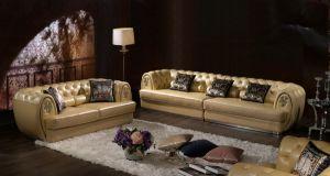 Elegant Beige Tufted Leather Sofa Set for Livingroom Furniture (LS-015)