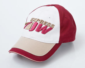 A08 Embroidered Baseball Cap pictures & photos