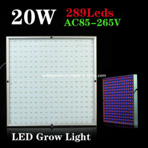 20W for Plant Growing LED Grow Light (ZW0013)