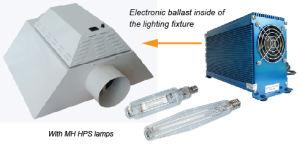 Grow/Hydroponics Lighting (AR/GL1000W)