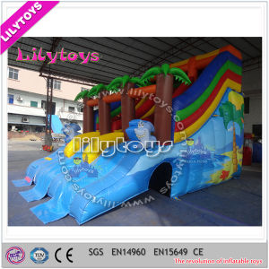 Frame Pool Water Slide, Inflatable Commercial Water Slide for Sale pictures & photos