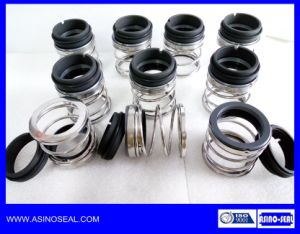 Elastomer Bellow Mechanical Seals as-E20 Replace AES P02/P02t
