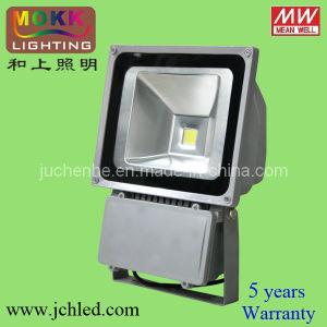 Bridgelux Chip CE RoHS 60W/70W/80W/100W/120W LED Flood Light