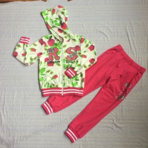 Fleece/French Terry Gilr Sport Suits in Children Clothes (zip-up hoodies+pant) Sq-6212