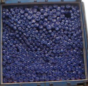 Truck Tarpaulin (PE 013)