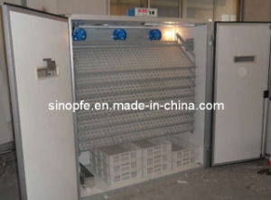Egg Incubator Model OM-6 pictures & photos