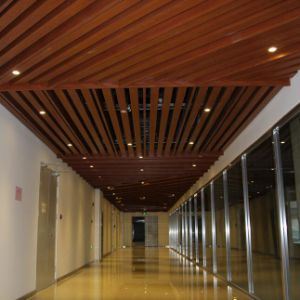 Customized Size Modern Design Aluminum U-Shaped Baffle Ceiling pictures & photos