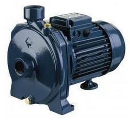 Double Impeller Centrifugal Pump pictures & photos