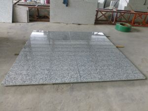China Natural Polished G439 Wooden Crate Packing Granite Big Flower White Granite Tile for Stair/Floor pictures & photos