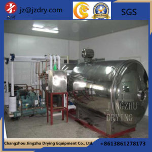 Round Static Vacuum Dryer Can Be Customized pictures & photos