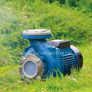 Cast Iron Household Centrifugall Pump with Ce pictures & photos