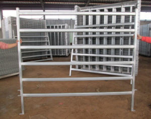 Steel Pipe Hot Dipped Galvanized Assembled Corral pictures & photos