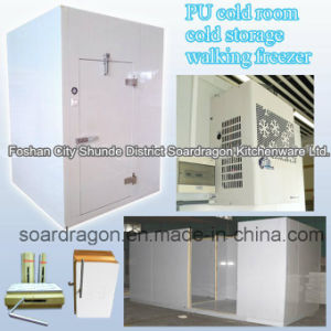 PU Cold Room Cold Storage Walking Freezer pictures & photos