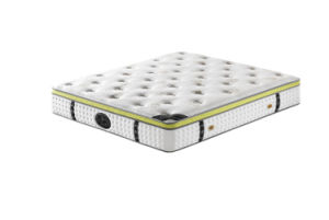 Factory Roll up Box Spring Mattress pictures & photos