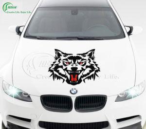 Car Stickers (KG-PT020) pictures & photos