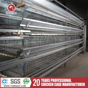 Farming Equipment Poultry H Type Battery Cage for Layers pictures & photos