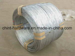 Galvanized Iron Wire/Binding Wire/ Wire Mesh pictures & photos