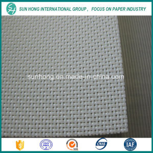 3 Shed Polyester Plain Weave Filter Fabrics pictures & photos