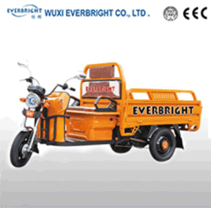 48V 800W Battery Operated Three Wheeler pictures & photos