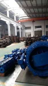 Wafer Double Offset Butterfly Valve pictures & photos