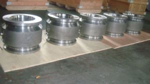 Dual Plate Wafer Check Valve Hub End pictures & photos