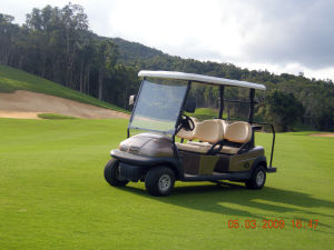 4 Seater Ce Approve Electric Golf Buggy for Sale pictures & photos